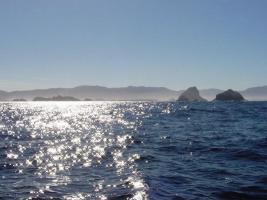 Tasmania – Malaleuca Inlet